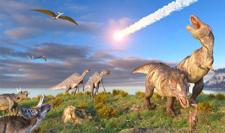 Американские ученые нашли камни, которые фиксируют первые моменты вымирания динозавров